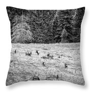 The California Mother And Daughter Throw Pillow by Jeff Phillippi