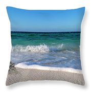The Crab And The Sea Throw Pillow