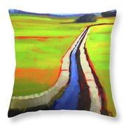 The Ditch Throw Pillow