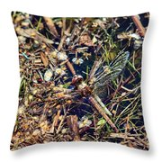 The End. Vagrant Darter Throw Pillow