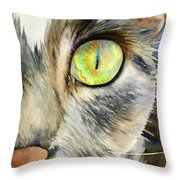 The Eye Of The Kitty Throw Pillow