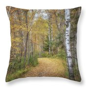 The Golden Path Throw Pillow by Susan Rissi Tregoning