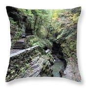 The Gorge Trail Throw Pillow