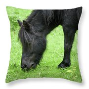 The Grass Is Greener Here. The Black Pony Throw Pillow