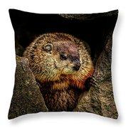 The Groundhog Throw Pillow by Bob Orsillo