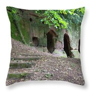 The Hermit's Cave Throw Pillow