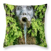 The Hundred Fountains Throw Pillow