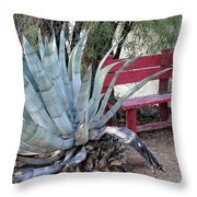 The Little Red Bench Throw Pillow