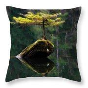 The Little Tree On Fairy Lake 5 Throw Pillow