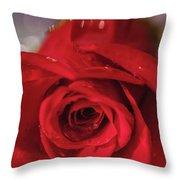 The Magic Of Roses Throw Pillow