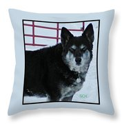 The Magnificent Guardian Of The Gate Throw Pillow