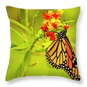 The Monarch Butterfly Throw Pillow