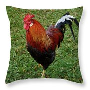 The Pose Of The Rooster Throw Pillow