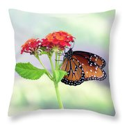 The Queen Of Butterflies  Throw Pillow