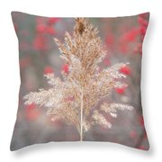 The Red Of Winter Throw Pillow