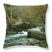 The River Psirzha Throw Pillow