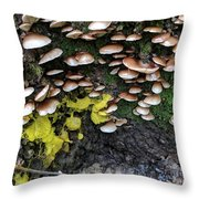 The Slow Battle Throw Pillow