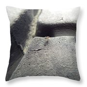 The Small Things In Life  Throw Pillow