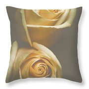 The Soft Shadows Throw Pillow