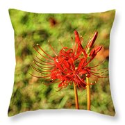 The Spider Lily Throw Pillow