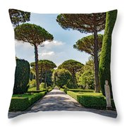 The Straight Throw Pillow