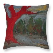 The Three Primary Colors Are The Unchanging Center Of The Stories Throw Pillow