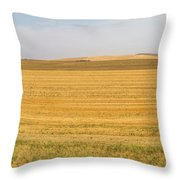 The Work Day Is Done Throw Pillow