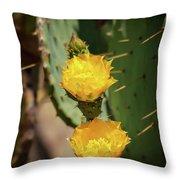 The Yellow Rose Of Arizona Throw Pillow by Rick Furmanek