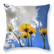 Things Are Looking Up - Wide Format Throw Pillow