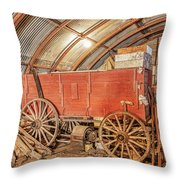 This Old Shed Held A Surprise Throw Pillow