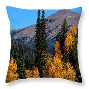 Thunder Mountain Aspens Throw Pillow