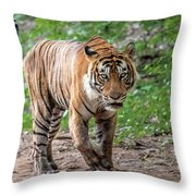 Tiger On A Stroll Throw Pillow
