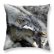 Timber Wolves Up Close Throw Pillow