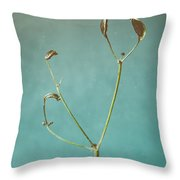 Tiny Seed Pod Throw Pillow
