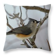 Titmouse Winter Morning Cutie  Throw Pillow
