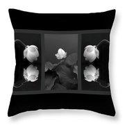 Tonal Study Triptych Throw Pillow