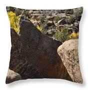 Top Of Rocks Above Canyon In Fall Throw Pillow