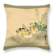Top Quality Art - Keinen Kachoshokan 12view 3 Throw Pillow