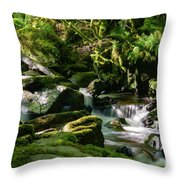 Torc Waterfalls Two Throw Pillow