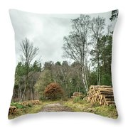 Track Through The Wood Throw Pillow by Nick Bywater