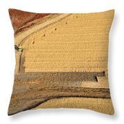 Transfer Throw Pillow by Carl Young