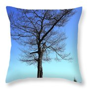 Tree And Great Lake Throw Pillow