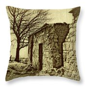 Tree And Ruins Throw Pillow