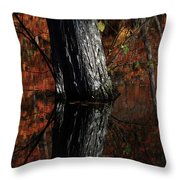 Tree Reflects In The Pond Throw Pillow