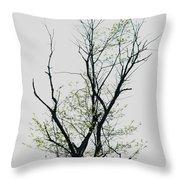Tree Series Five Throw Pillow