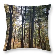 Trees And Shadows 2 Throw Pillow