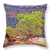 Trees Plateau Valley Colorado National Monument 2871 Throw Pillow