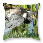 Tricolored Heron With Ruffled Feathers Throw Pillow
