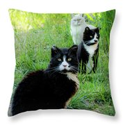 Trio In The Grass Throw Pillow