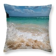 Tropical Fantastic View Throw Pillow